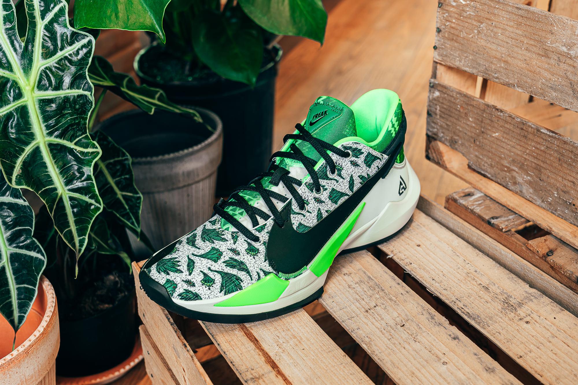 Nike Zoom freak 2 Naija Basketball